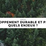 Développement durable et papier : quels enjeux ?